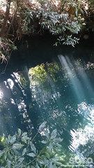 揺ヶ池(2)