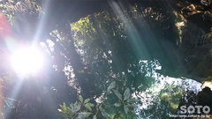 揺ヶ池(1)