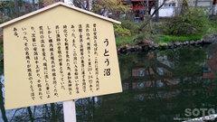 善知鳥神社(7)