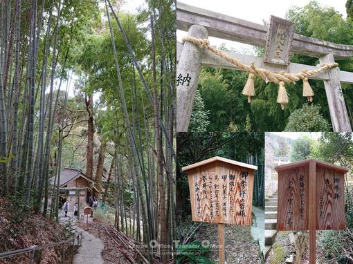 神龍八大龍王神社(2021-1)