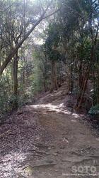 大津山登山道