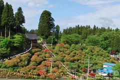 七戸城展望台から見た天王神社