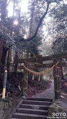 岩戸神社(鳥居)