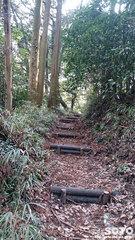 岩戸神社(参道@遊歩道1)