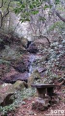 岩戸神社(参道@遊歩道/二の滝)