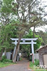 澳津神社(1)