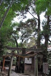 神龍八大龍王神社(3)
