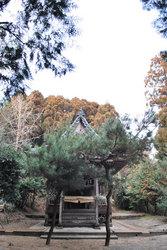 別雷神社(2)