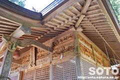 幣立神宮(8)