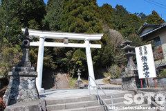 幣立神宮(1)