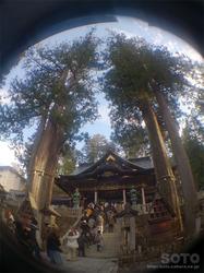 三峯神社(拝殿とご神木)
