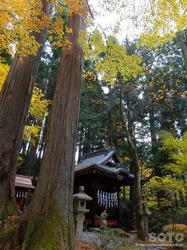 三峯神社(大山祇神社)