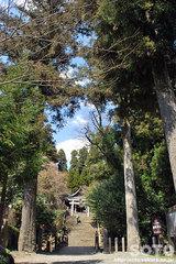 國造神社(鳥居)