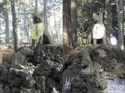 三峯神社(遠宮の狼)