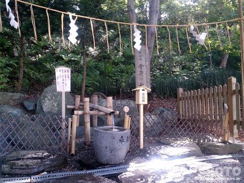 千歳神社(湧水)