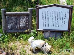 白兎神社(看板1)