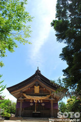 白兎神社(拝殿)