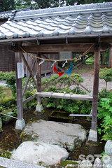 針江生水の里(神社2)