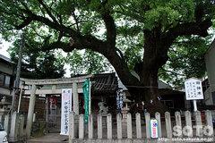 粉河寺(手前の神社)