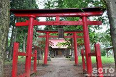 鬼越蒼前神社(鳥居)