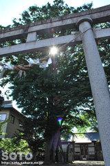 三ツ石神社(1)