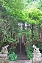 戸隠 宝光社(1)