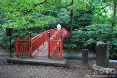諏訪大社(浮島社 橋)