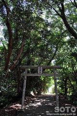 野母半島県立公園(日山神社1)