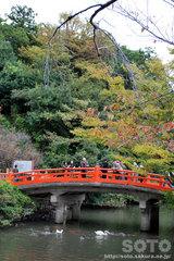 武田神社(1)