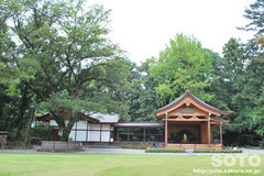武田神社(6)
