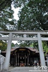 武田神社(7)