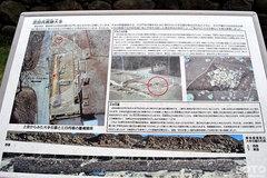 武田神社(9)