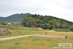 武田神社(10)