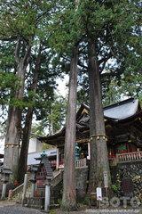 三峯神社(10)