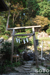 筑波山神社(ご神水)