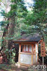 香取神宮(押手稲荷神社)