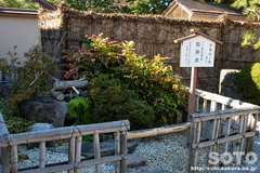 身曾岐神社(10)