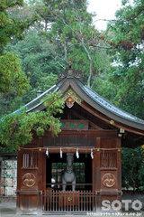 多賀大社(5)