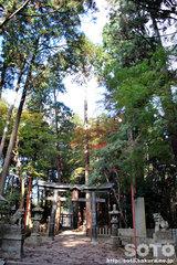 田村神社(3)