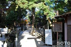 田村神社(5)