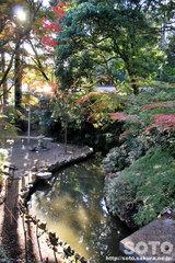 田村神社(8)
