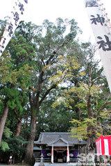 水屋神社(境内)