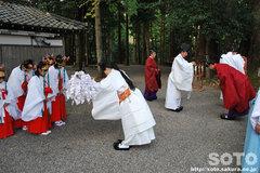 水屋神社(秋季例大祭2)