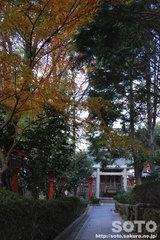 おのころ島神社(5)