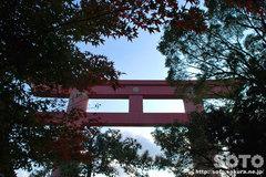 おのころ島神社(10)