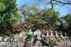 諭鶴羽登山(神倉神社そば)