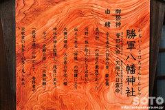 椿神社(6)