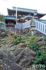 椿神社(7)