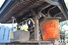 椿神社(8)
