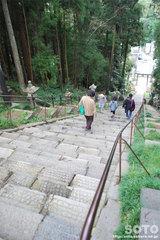 塩竃神社(参道の石段)